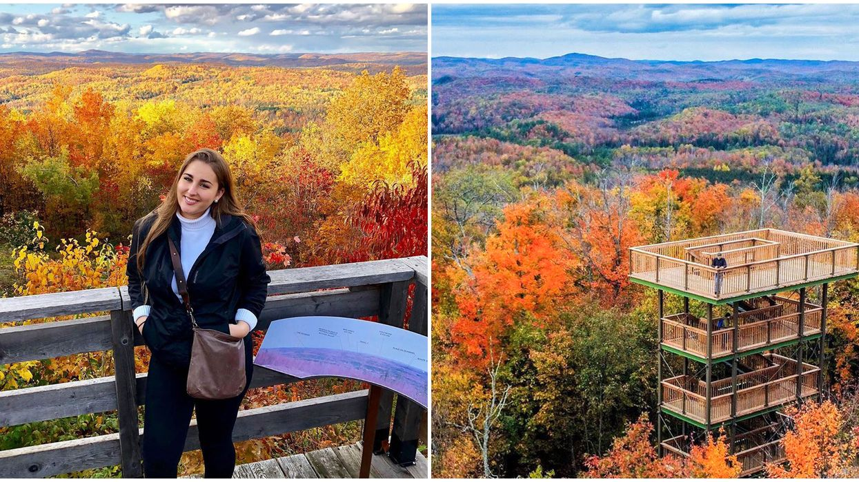 Lookout Tower Near Ottawa Will Give You The Best Fall Views