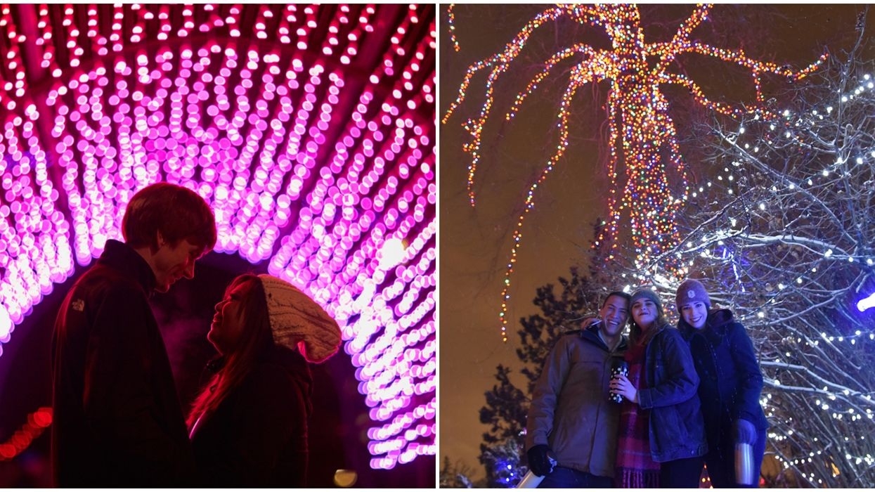 Calgary ZOOLIGHTS Is Finally Back With 2-Billion Lights & A Boozy Adult-Only Date Night