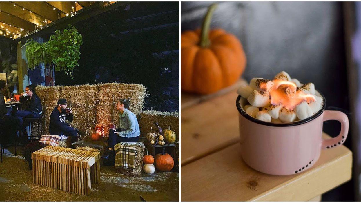 Toronto's Harvest Patio Has Boozy Marshmallow Hot Chocolate