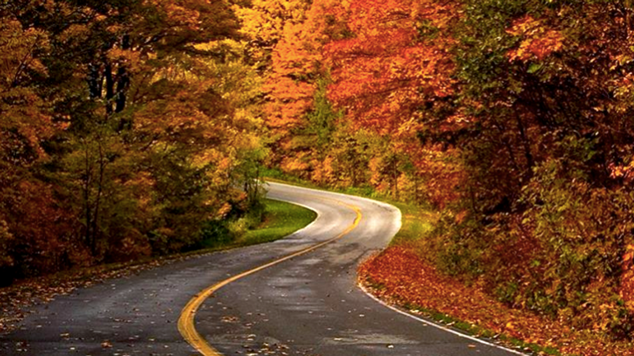 Gatineau Park In The Fall Looks Like A Dream & You Need To Experience It