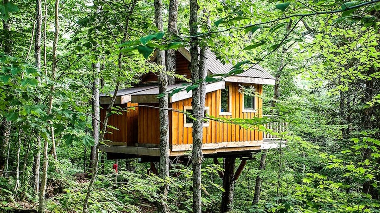 You Can Stay In This Adorable Treehouse Just A Couple Hours From Ottawa