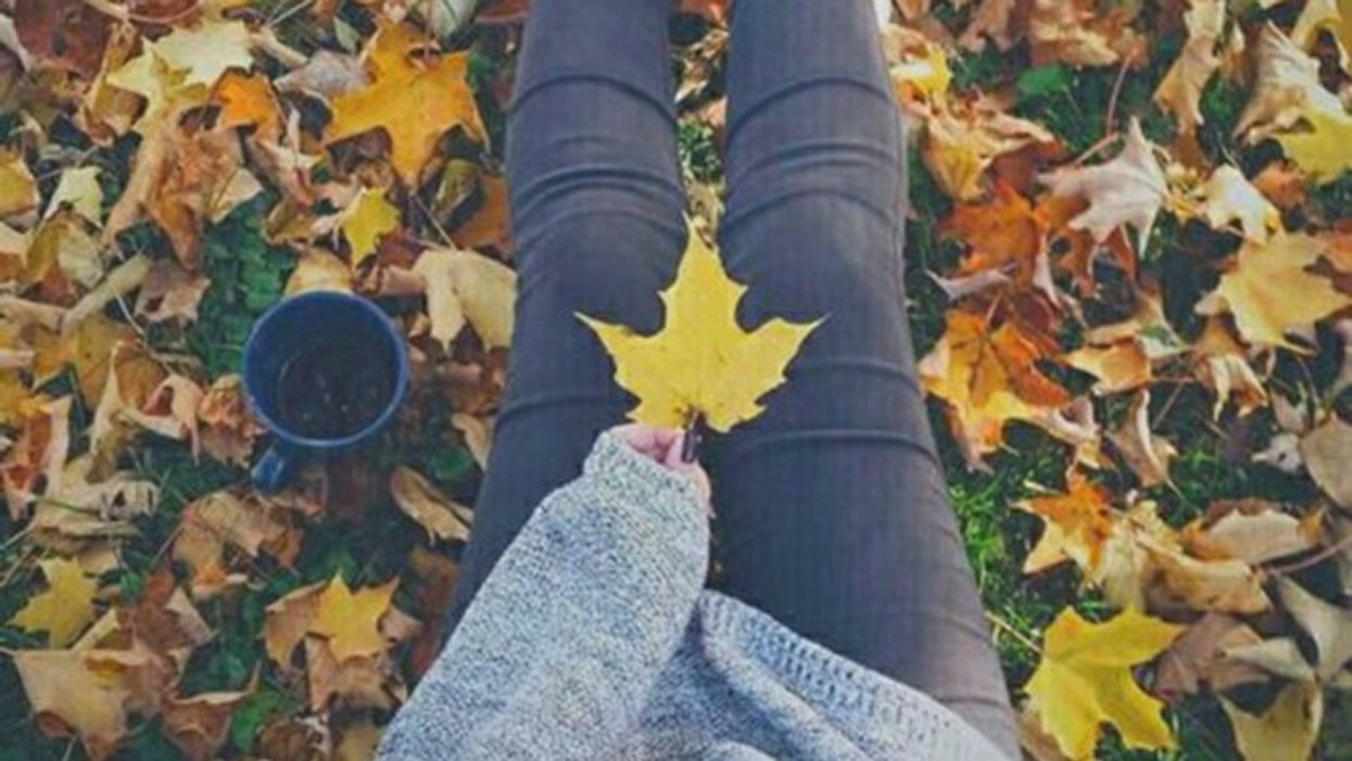 12 choses à faire cet automne à Québec même si t'es célibataire comme jamais
