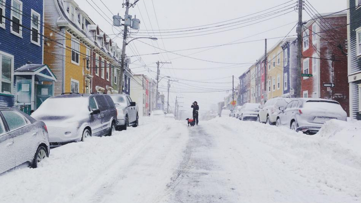 21 Pictures That Perfectly Capture How Insane This Newfoundland Snow Storm Is