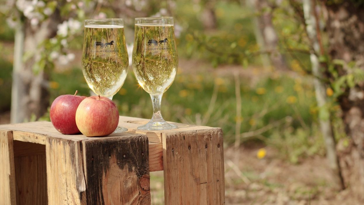 There Is A Cider Festival Happening In Toronto This Weekend