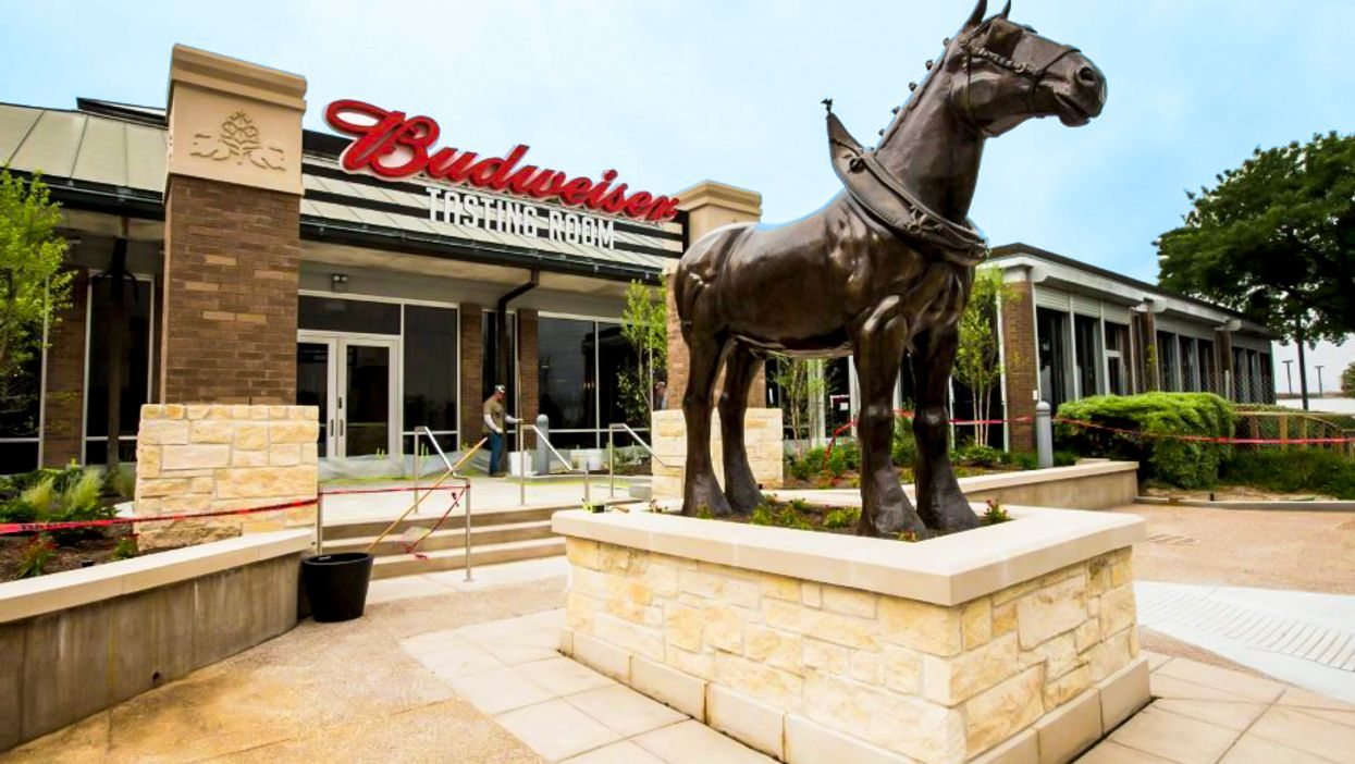 I Went To The Official Budweiser Brewery And This Is What Happened