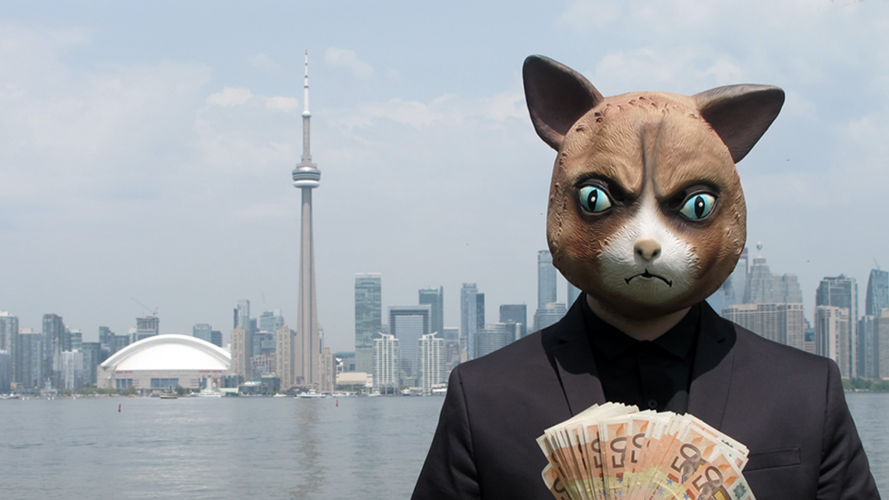 This Creepy Cat Is Hiding Euros All Over Toronto For You To Find