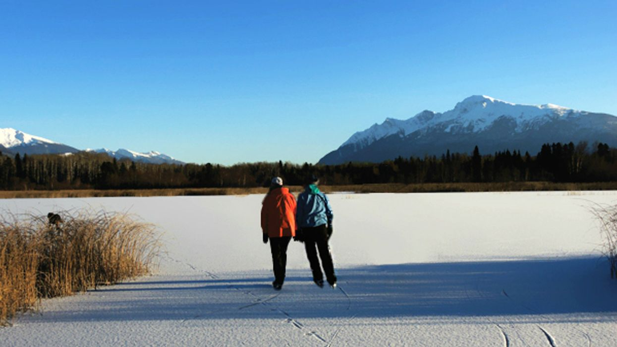 This 1.2-km Ice Skating Trail Takes You Through A Frozen Cranberry Marsh In Ontario