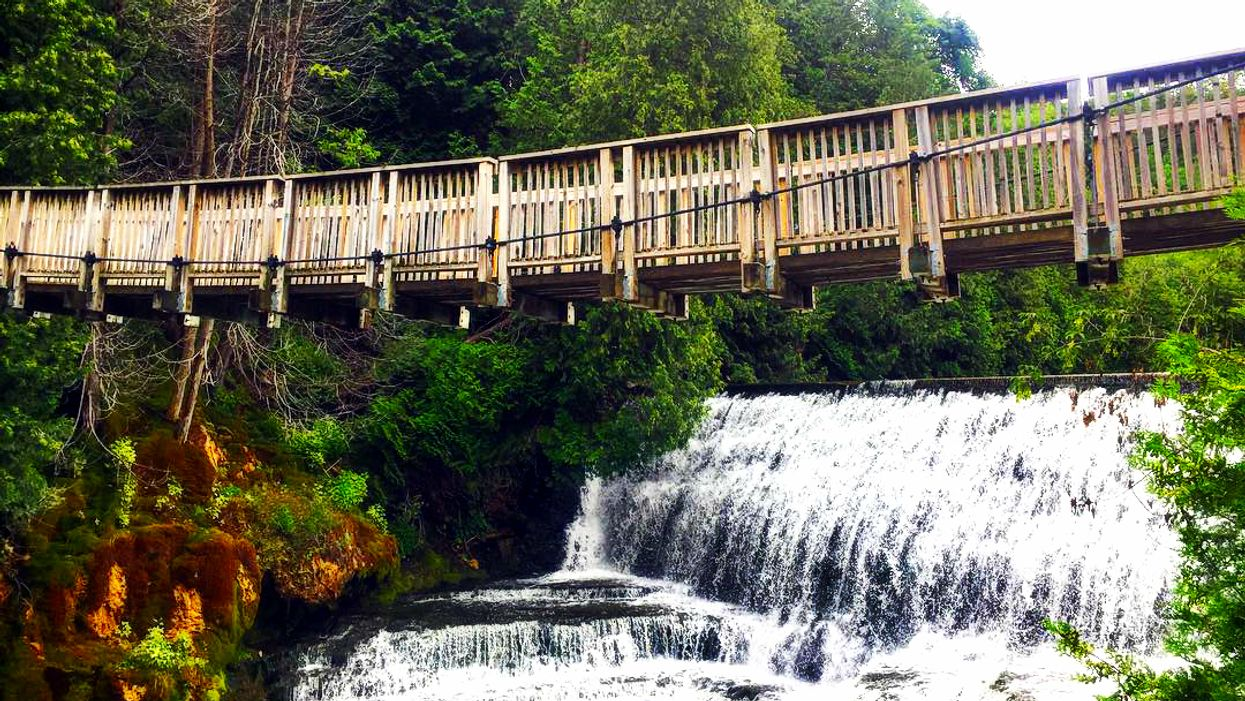 This Beautiful Suspension Bridge Takes You Over A Gorgeous Waterfall In Ontario