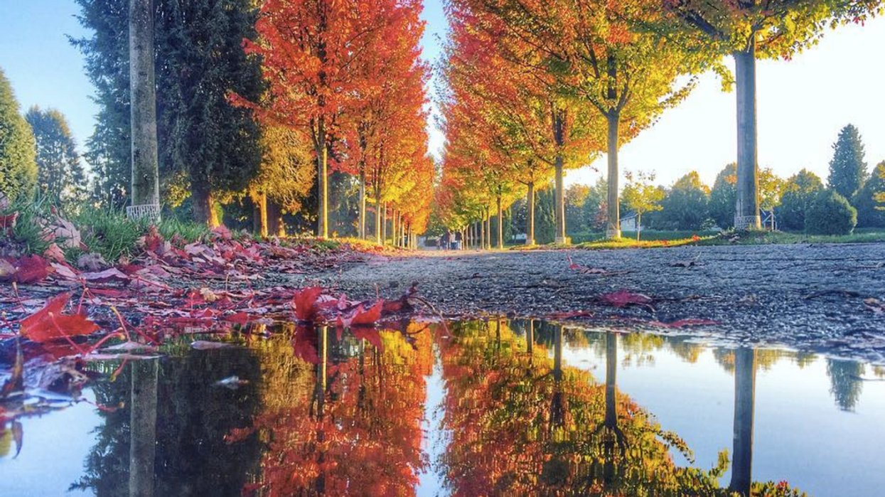 19 Vancouver Spots To Take Super Cool Fall Instagrams