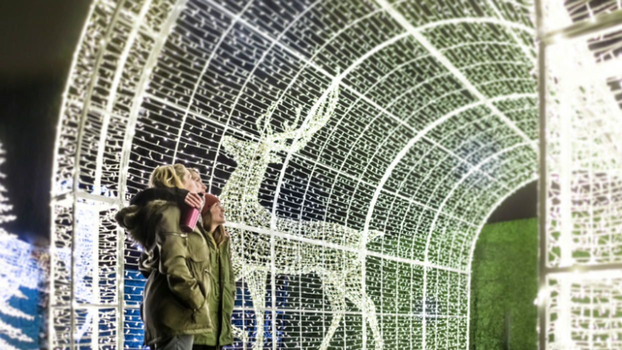 The World's Largest Christmas Light Maze Opens In Vancouver Next Week