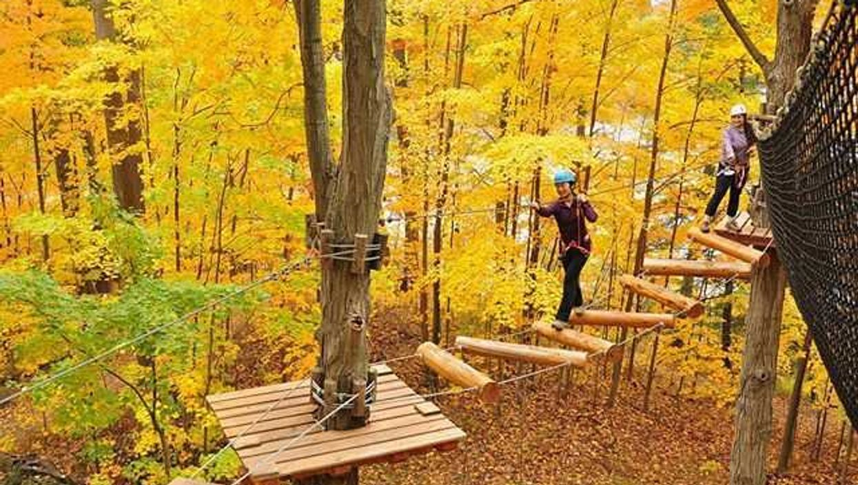 This Epic Treetop Park In Ontario Will Bring Out Your Inner Tarzan