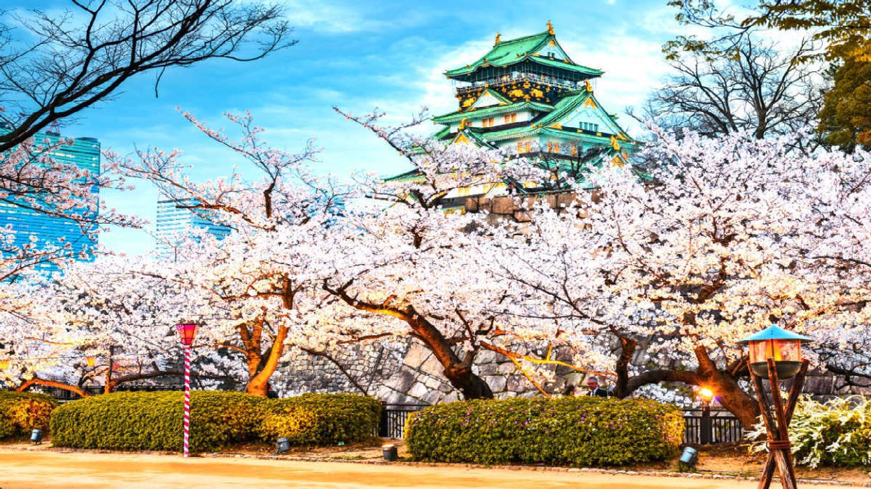 You Can Now Fly To Japan From Toronto For $750 Round Trip