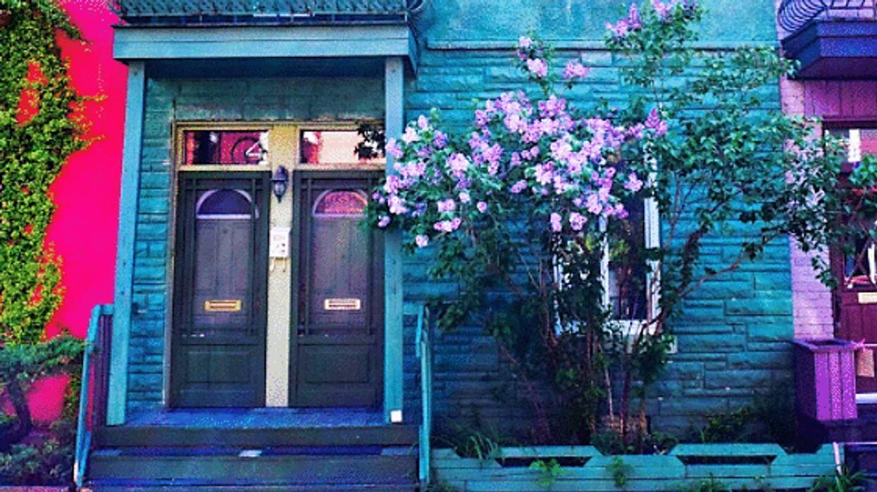 """Les 24 places où prendre les plus belles """"instapics"""" de l'été à Montréal"""