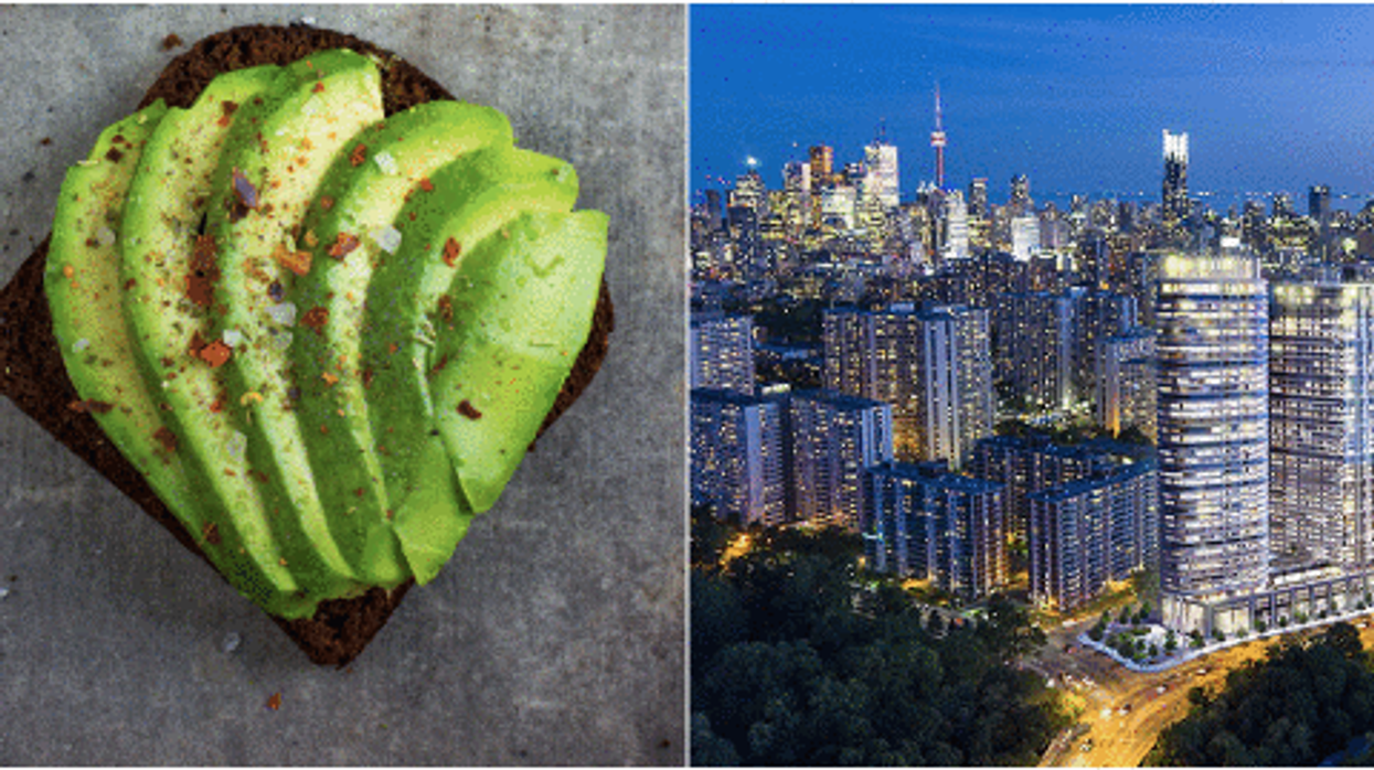 This Calculator Tells You How Much Avocado Toast You Need To Give Up To Buy A House In Toronto