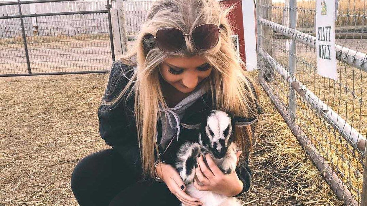 This Baby Animal Festival Happening In Calgary Is Actually The Cutest In The World
