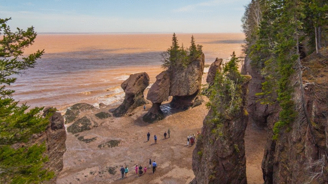 11 Provincial Parks In New Brunswick That You Must Take A Road Trip To At Least Once