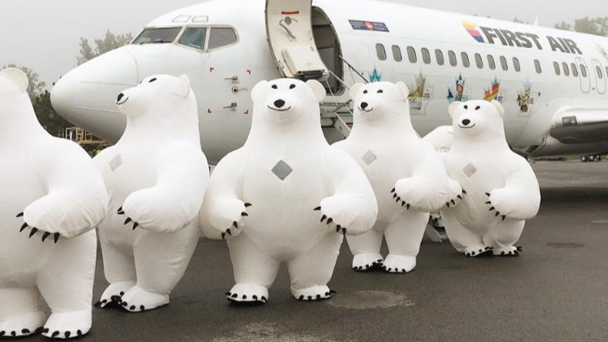 There Are Giant Polar Bears Roaming Around Downtown Ottawa Today And Here's Why