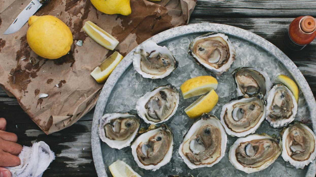 Un gros party d'huîtres aura lieu à Montréal très bientôt