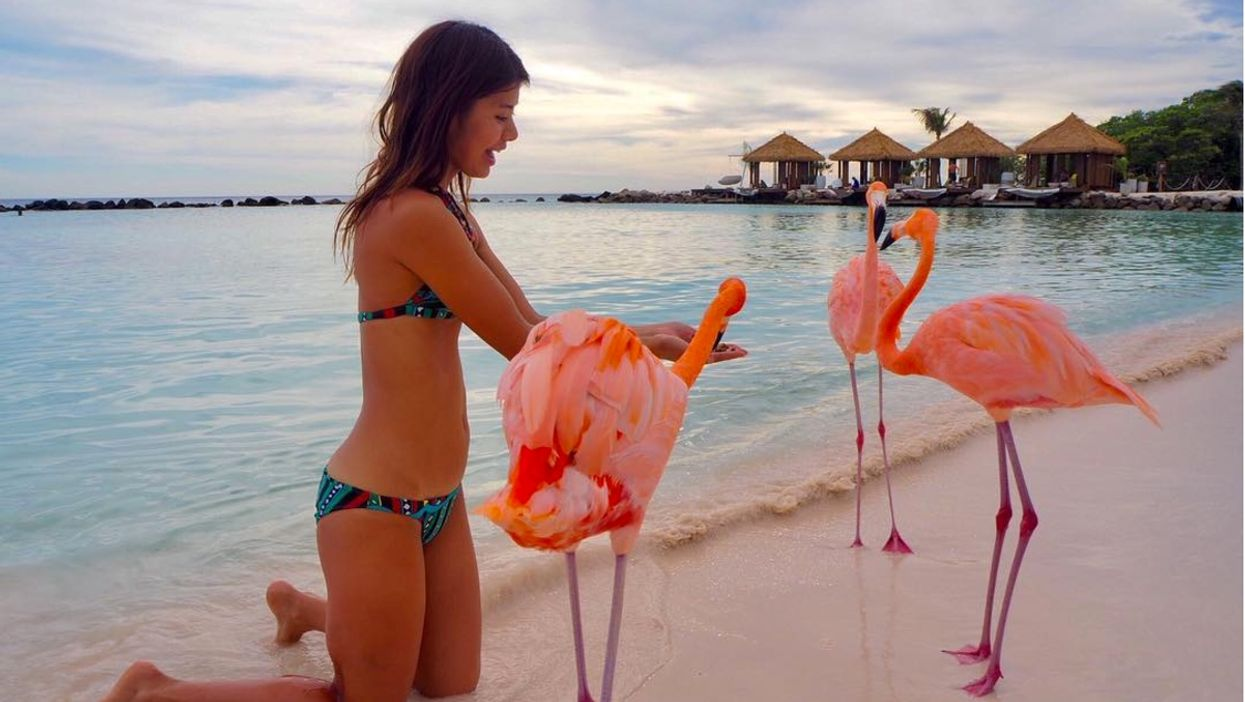You Can Travel To This Secret Beach Full Of Flamingos In The Caribbean