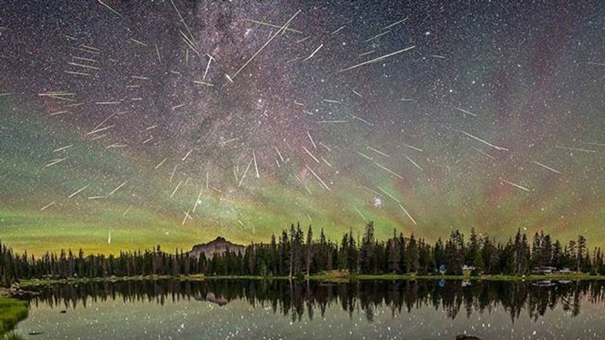 There's Going To Be An Epic Meteor Shower In Vancouver This Weekend And Here's Where To Watch It