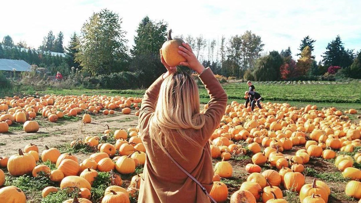 13 Things To Do In Vancouver This Fall Because You're So Over Summer