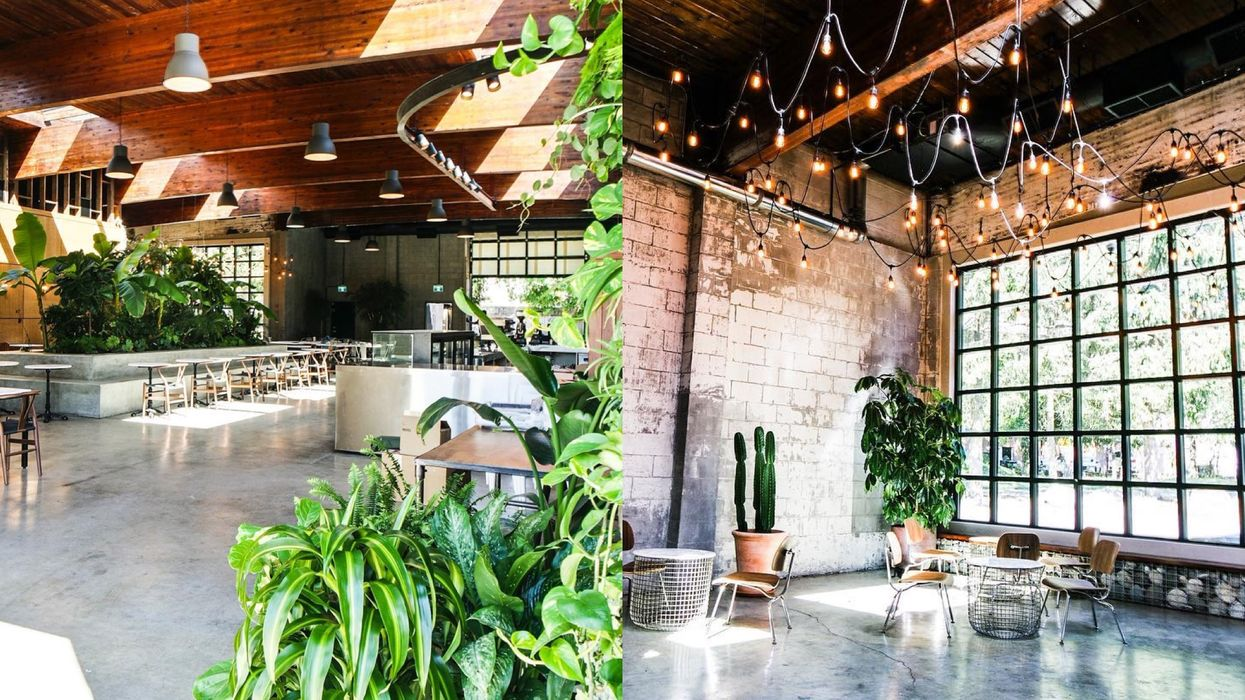 This New Cafe In Vancouver Has A Tropical Indoor Garden And It's Cute AF
