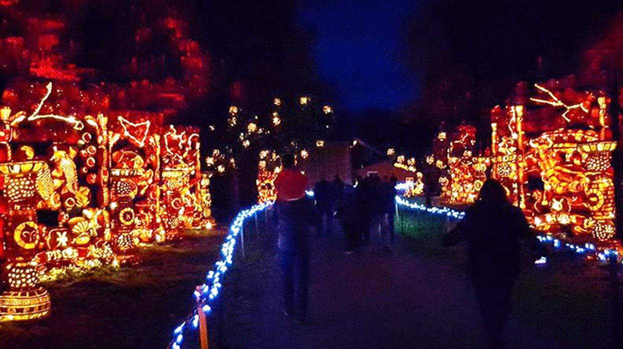 Le village de citrouilles le plus magique arrive pour l'automne près d'Ottawa