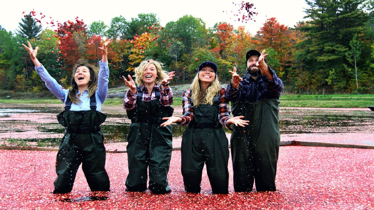 You Must Visit This Amazing Cranberry Marsh In Ontario