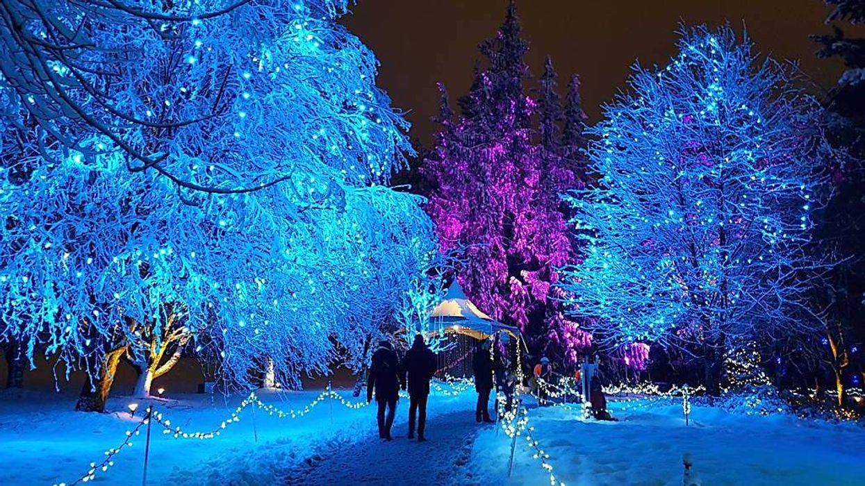 This Magical Christmas Garden Is Back Next Month In Vancouver