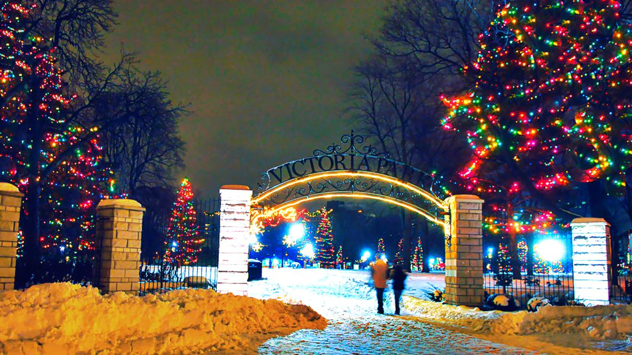 This Ontario Park Will Transform Into An Enchanted Christmas Forest This Winter