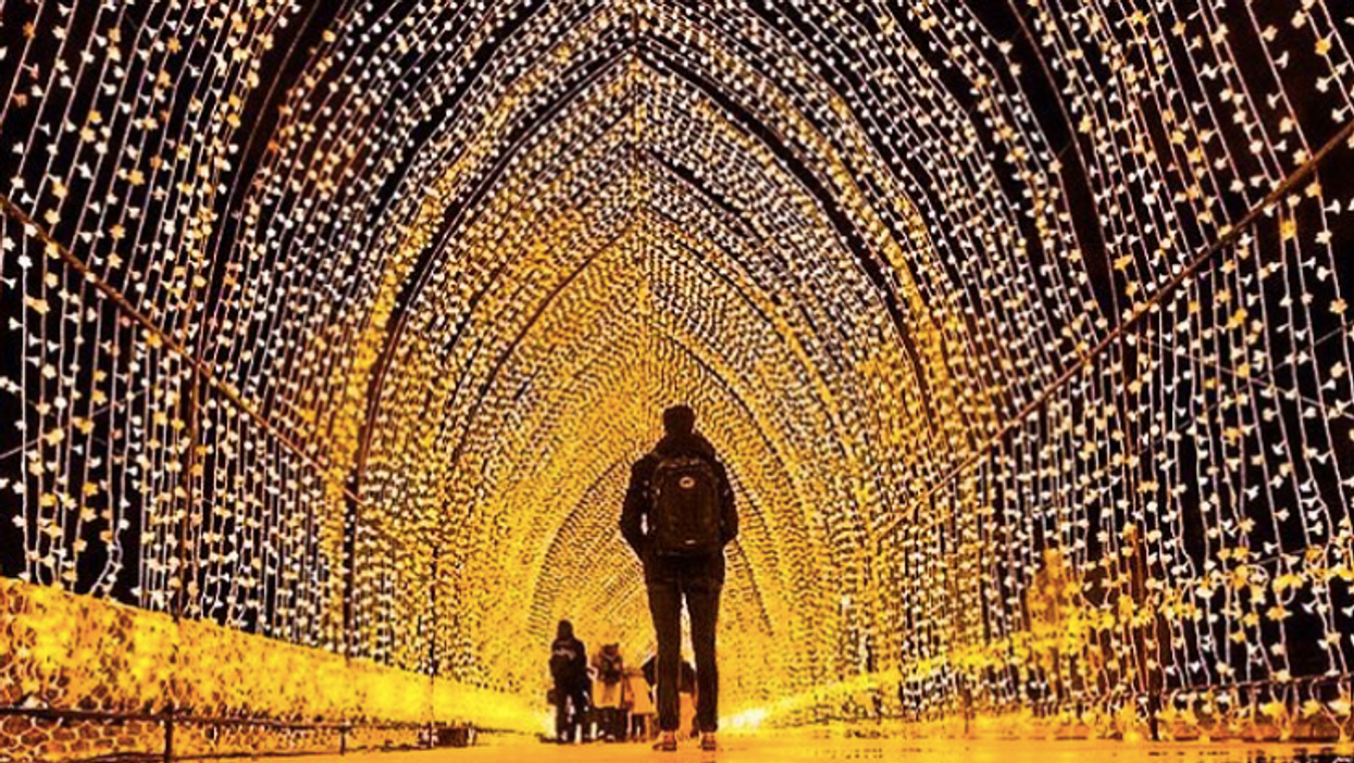 The Toronto Christmas Market Will Have An Epic Light Tunnel This Year