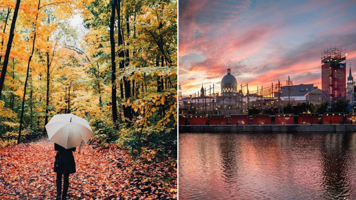 Montréal parmi les 5 destinations à visiter dès maintenant