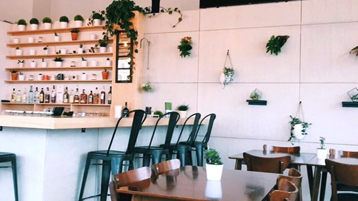 This Hidden Coffee Shop In Ottawa Will Look Absolutely Perfect On Your Instagram