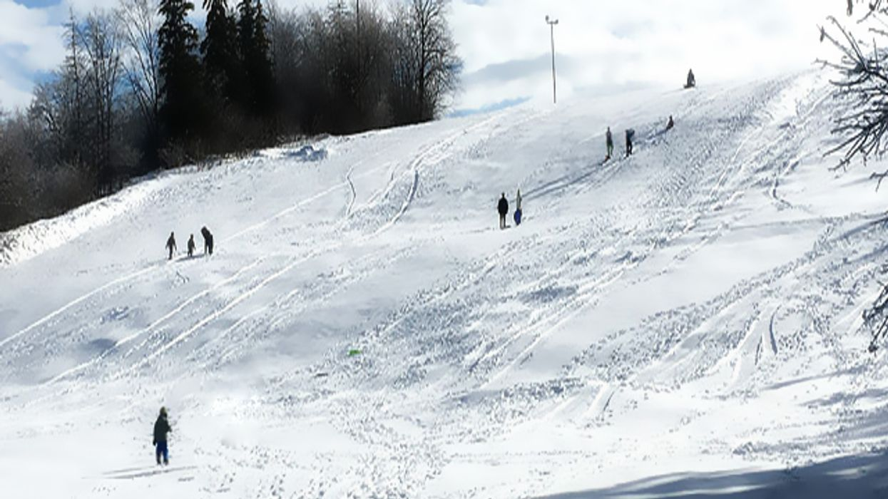 This Ontario Park Allegedly Has The Best Hill For Tobogganing In North America