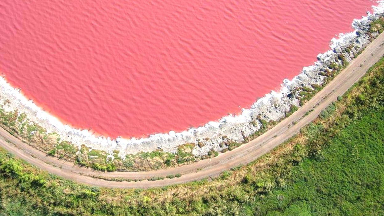 This Pink Lake Is Canada's Best Kept Secret