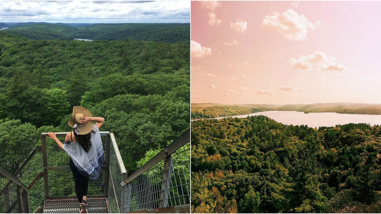 This Hidden Lookout Tower In Ontario Will Give You The Best Spring Views