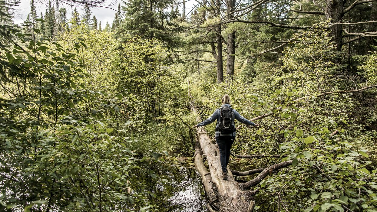 12 Stunning Hiking Trails Just Outside Of Toronto You Need To Experience This Spring
