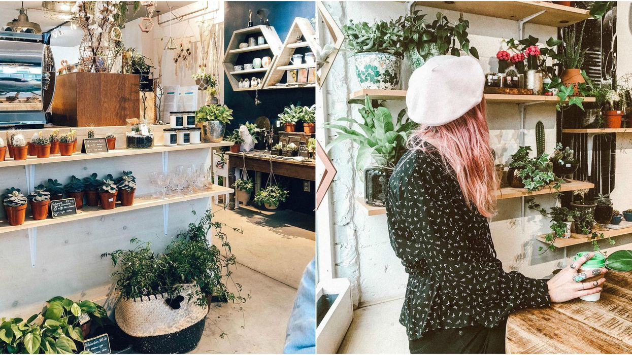 This Hidden Cafe In Toronto Is Also A Mini Succulent Shop And It's So Adorable