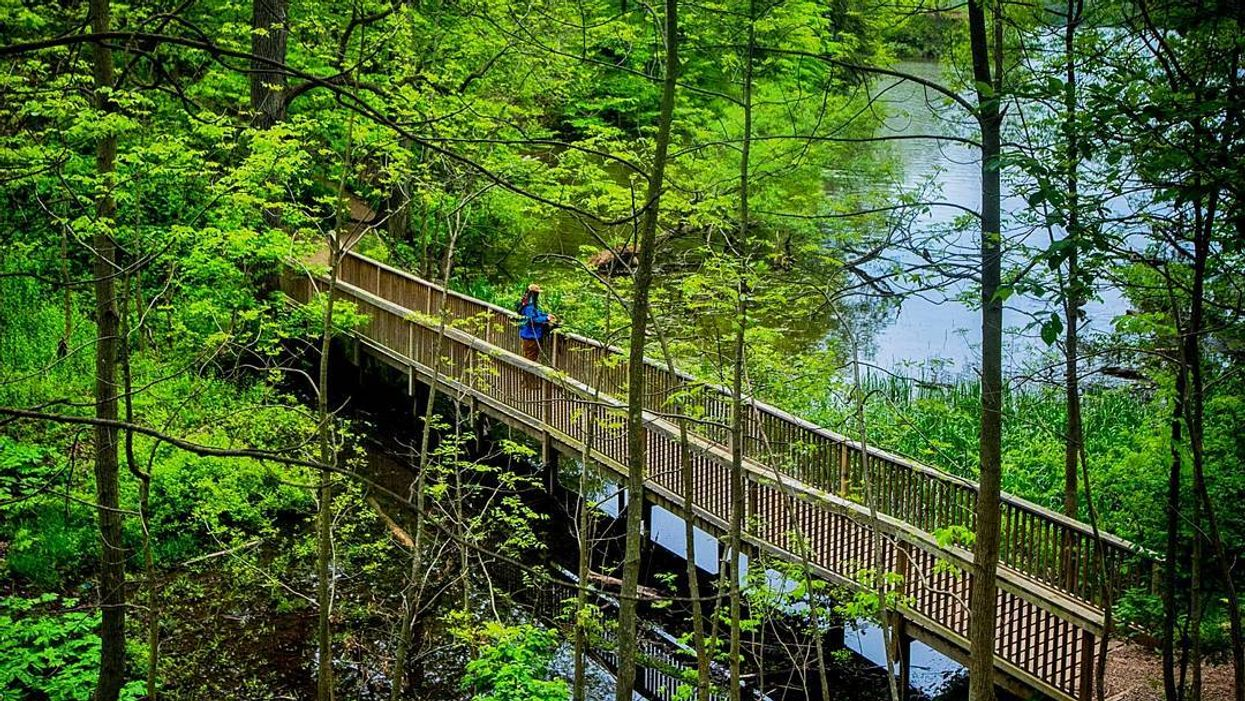 This 7.5km Waterfront Trail Takes You Through A Beautiful Nature Sanctuary In Ontario