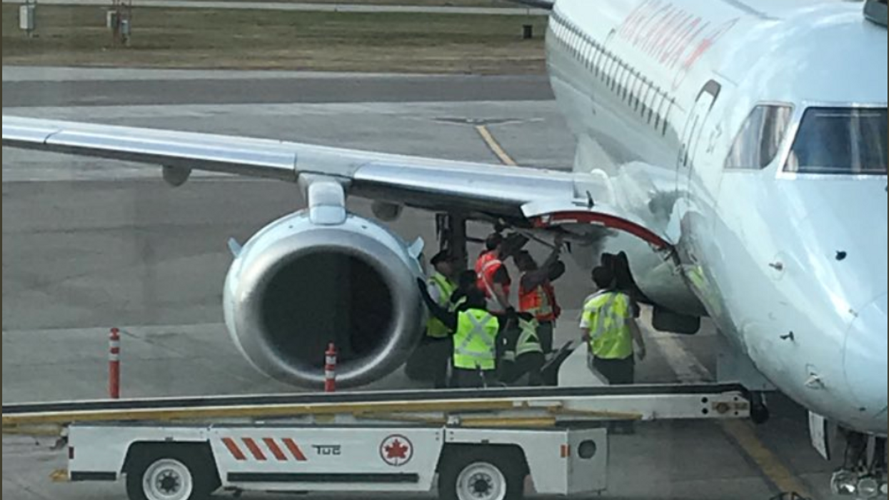 A Raccoon Delayed An Air Canada Flight In Saskatchewan For Hours Yesterday And It's Hilarious