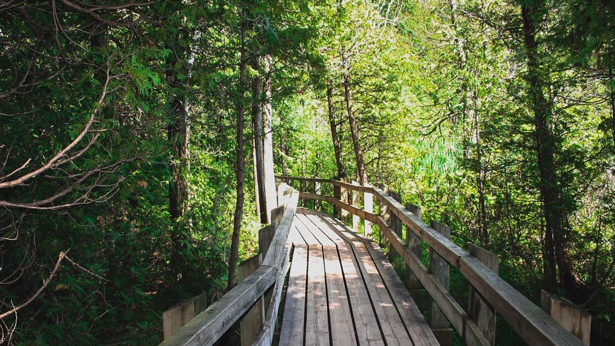 This 1.4km Elevated Boardwalk Trail Will Lead You To A Rare Turquoise Lake In Ontario
