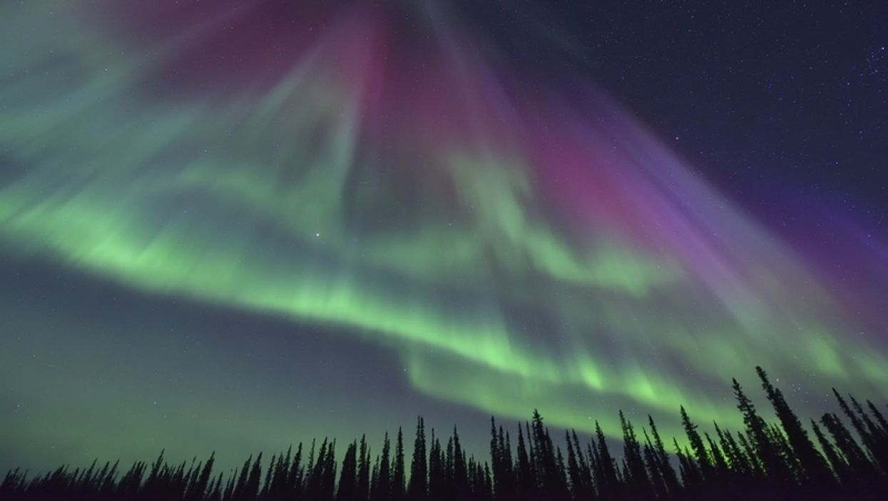 This Secret Spot Near Toronto Is The Absolute Best Place To See the Northern Lights