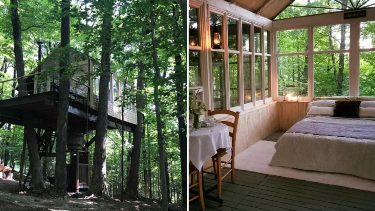 Tu peux louer cette mignonne cabane dans les arbres super romantique à 2h de Montréal