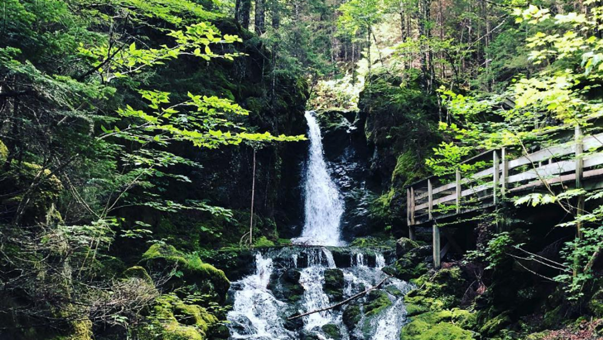 This 1.5-km Trail In Canada Takes You Through A Breathtaking Forest Filled With Waterfalls