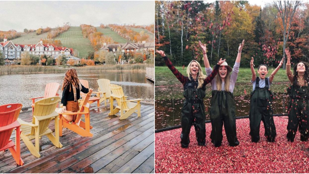 30 Things To Do In Ontario That You Have To Add To Your Fall Bucket List