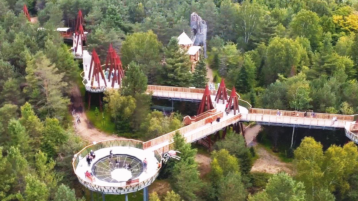 Tu peux faire cette folle randonnée perchée dans les arbres tout près de Montréal