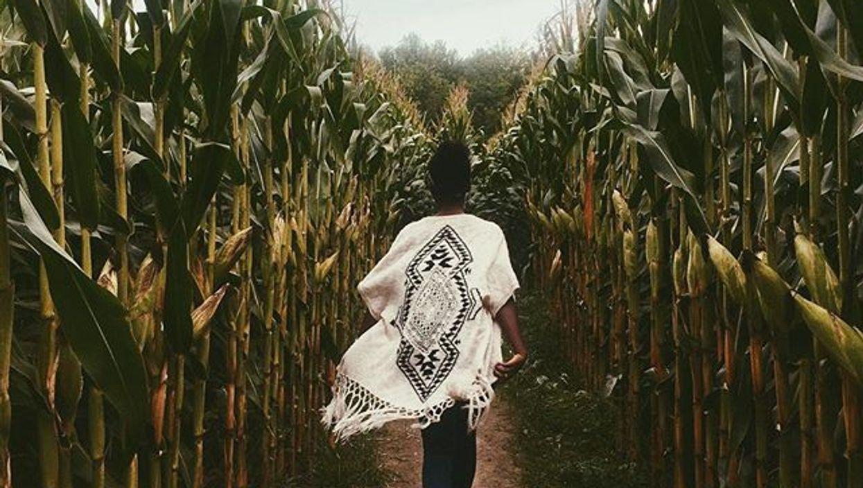 Le labyrinthe de maïs géant dans lequel tu veux te perdre à seulement 25 minutes de Montréal