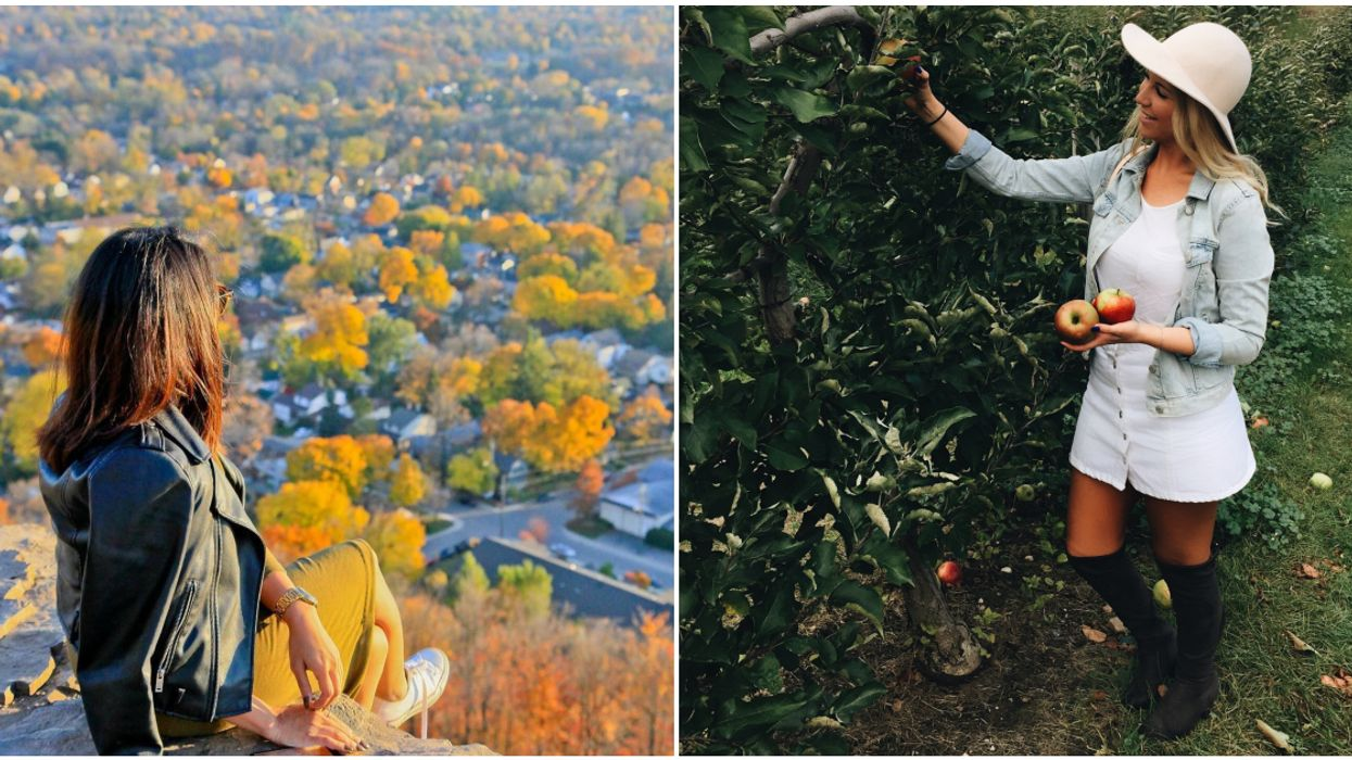 Spontaneous Fall Road Trips Less Than 1 Hour Away From Toronto