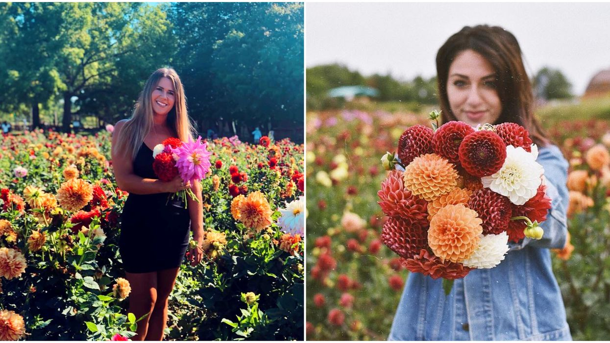 You Can Pick Your Own Flowers At This Adorable Field In Ontario