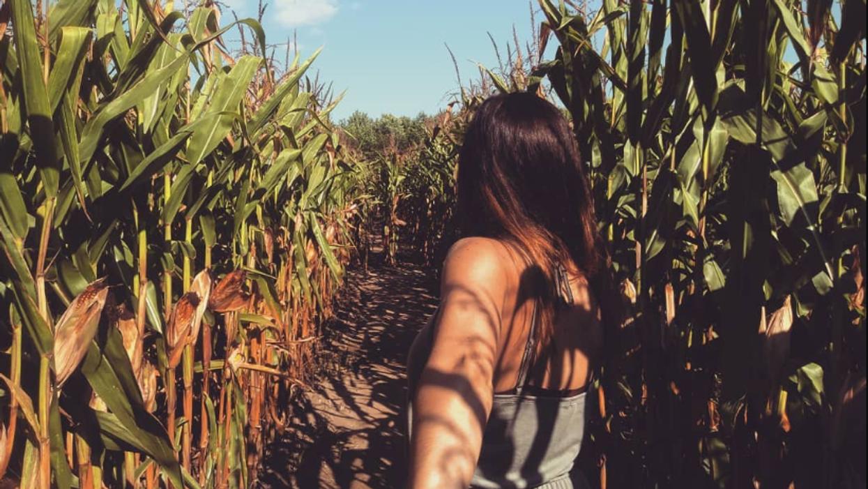 7 endroits à Montréal où prendre des photos Instagram complètement folles cet automne